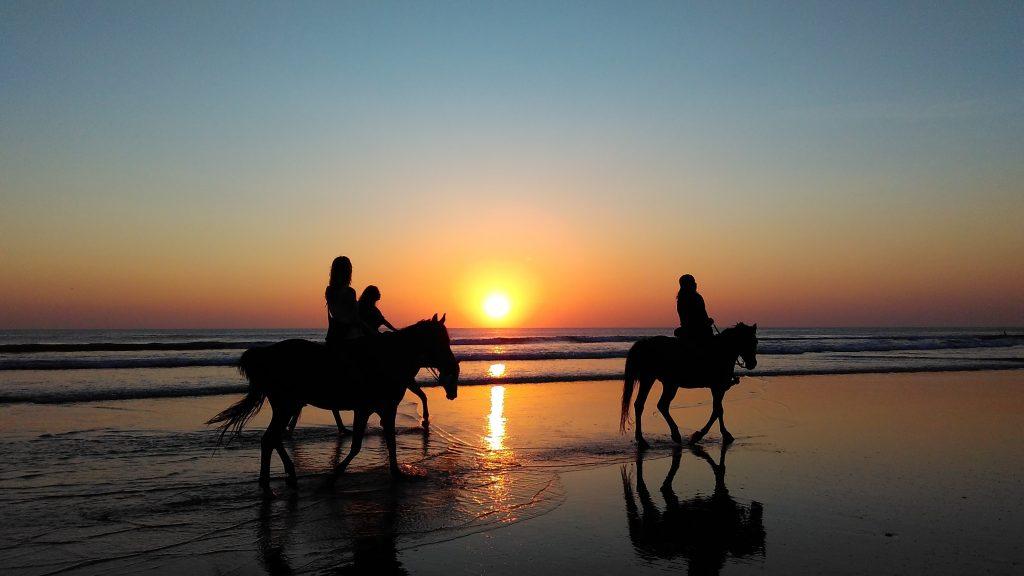 Få rideudstyr fra USA - nemt, billigt og gennemskueligt