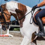 Køb ridestøvler fra USA med ShopUSA