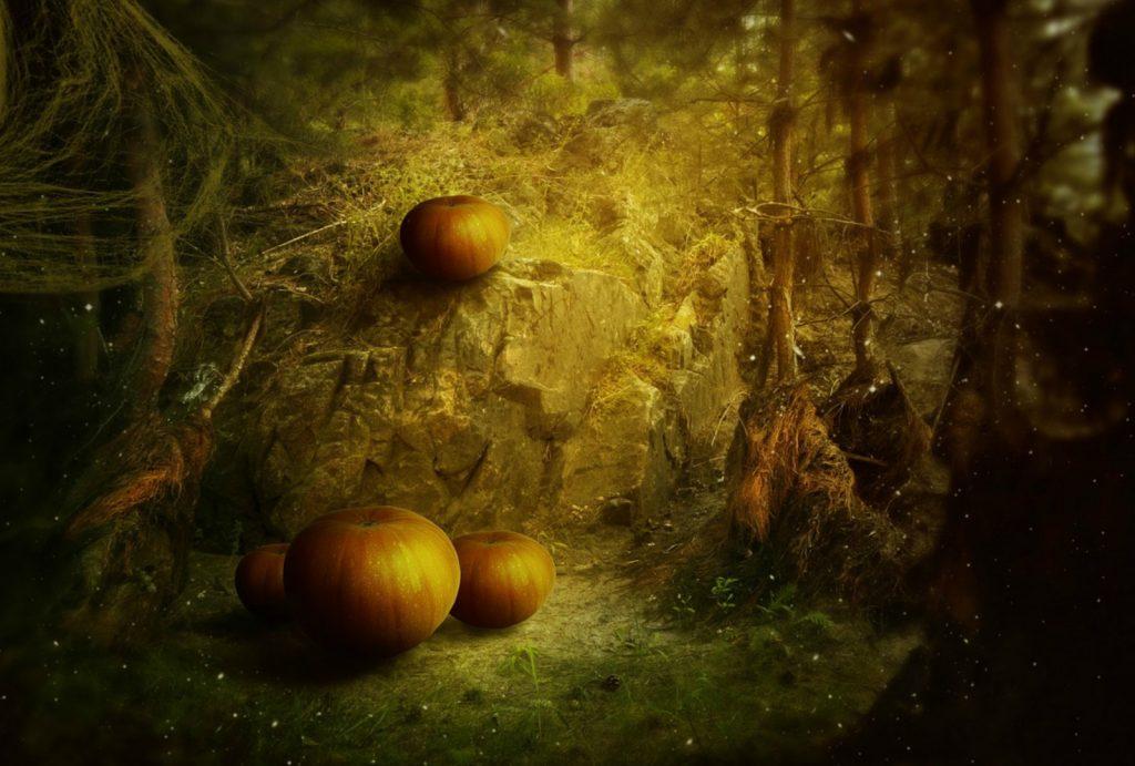 Halloween a Special Celebration - ShopUSA.In