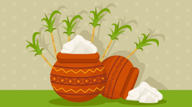 Pongal is the Best Festival in India