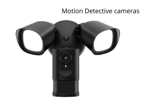Motion Detection Cameras