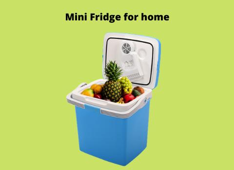 Mini fridge for home