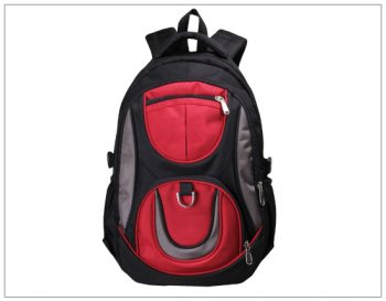 Shop and Ship Bags Globally using ShopUSA